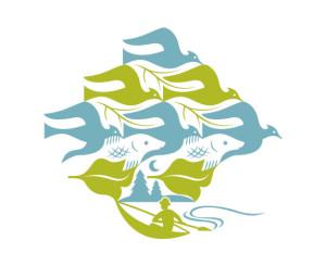VAF logo