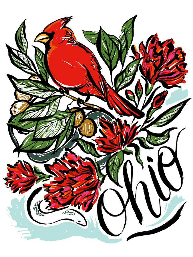 Ohio state bird with state flowers, red carnations and state snake